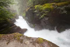 Avalanche creek Stock Photos