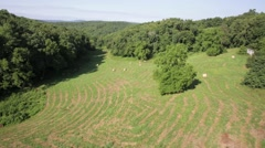 Aerial View of a Hay Pasture Stock Footage