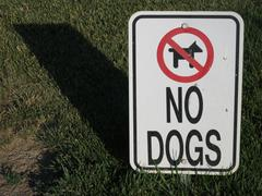no dogs allowed - stock photo