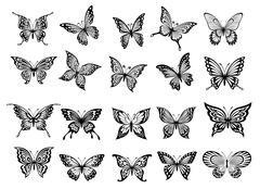 Set of twenty vector butterflies Stock Illustration