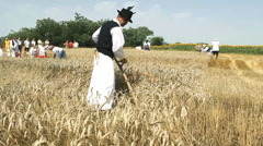 Peasant in a field with a hand mower WORKING Stock Footage