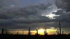 Sunset Star Sparkles Arizona Desert Landscape Time Lapse Stock Footage