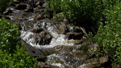 Clear water mountain stream in forest 4K 051 Stock Footage