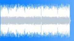 The german polka king Accordion Solo - stock music
