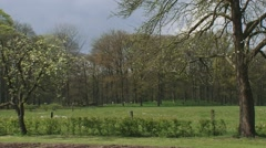 Dutch coulissen landscape, small scaled landscape bordered by rows of trees. Stock Footage