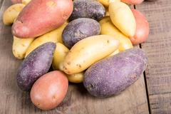 group of fingerling potatoes on wooden table - stock photo