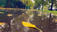 Falling yellow autumn leaf POV. Rainy day on wet city street. Stock Footage