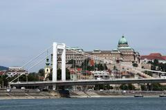 elisabeth bridge on danube river budapest - stock photo