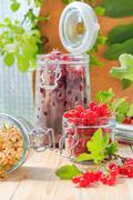 red white currants gooseberries jars preparations - stock photo