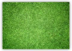 Greensward football Stock Photos