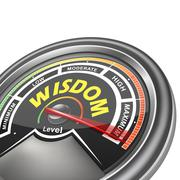 vector wisdom conceptual meter indicator - stock illustration