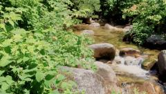 Mountain Water Stream Stock Footage