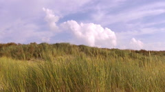 North Sea coast in the summer. - stock footage