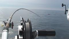 Trolling fishing setup Stock Footage
