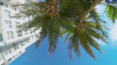 POV looking upward at palm trees and hotel Stock Footage