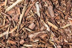 wooden mulch - stock photo