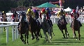 4k Horse Racing show jumpers jump over the hurdle 4k or 4k+ Resolution