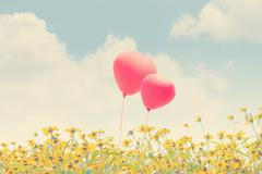 Love Balloons Stock Photos