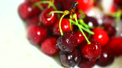 Jet of water to wash cherries. Stock Footage