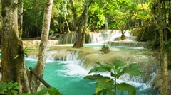 Kouang si waterfall, laos, luang prabang. thickets of tropical trees Stock Footage
