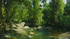 small rapids river in the forests of cambodia - stock footage
