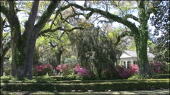 Louisiana Rosedown gardens with live oaks 4k Stock Footage