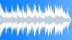 The Easy Life - easy listening acoustic ukulele pop Stock Music