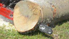 Cutting slices of wood log with a chain saw Stock Footage