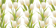 Stock Illustration of Tulip, floral background, seamless pattern.