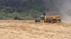 Combine harvesting grain - stock footage
