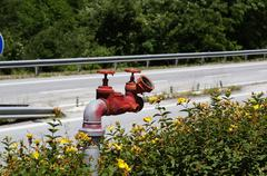 On expressway near gas station red fire hydrant Kuvituskuvat