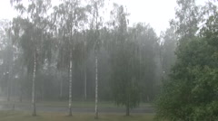 Heavy rainfall during an extreme thunderstorm in Sweden Stock Footage