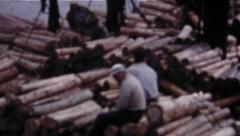 Loggers On Huge Pile Of Logs - Vintage 8mm - stock footage