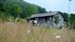 Old wooden shed in the country, establishing panning shoot Stock Footage