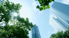 Business buildings background. park trees. skyscrapers skyline Stock Footage