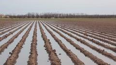 Farm land irrigation Stock Footage