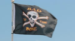 Pirate Flag Waving in the Ocean Breeze Stock Footage