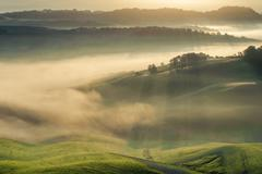 tuscan fields wrapped in mist, italy - stock photo