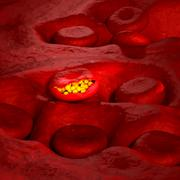 Stock Photo of Malaria Virus Cell - 3D illustration