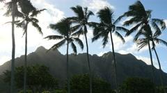 Kualoa beach park, oahu, hawaii.. Stock Footage