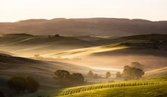 Dawn in Tuscany, Val d'Orcia, Italy Stock Photos