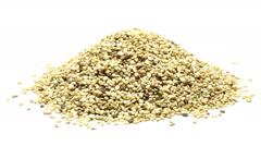 Heap of dried organic sesame seeds on white background rotating Stock Footage