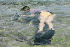 Woman photographer diving into water of red sea Stock Photos