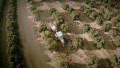 Aerial top view of a tractor working on a field of orange trees. Seville, Spain. Stock Footage