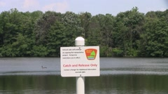 Catch and release only sign overlooking lake trees goose Stock Footage