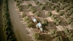 Slow motion aerial top view of a tractor on an oranges field. Seville, Spain. Stock Footage