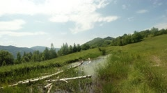 Summer day in the mountains, above the small lake fly dragonfly Stock Footage
