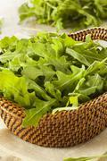 Stock Photo of organic raw green arugula