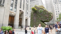 NYC B Roll - Rockefeller Plaza Hedge Sculpture Stock Footage