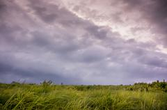Clouds over a green grassy field Stock Photos